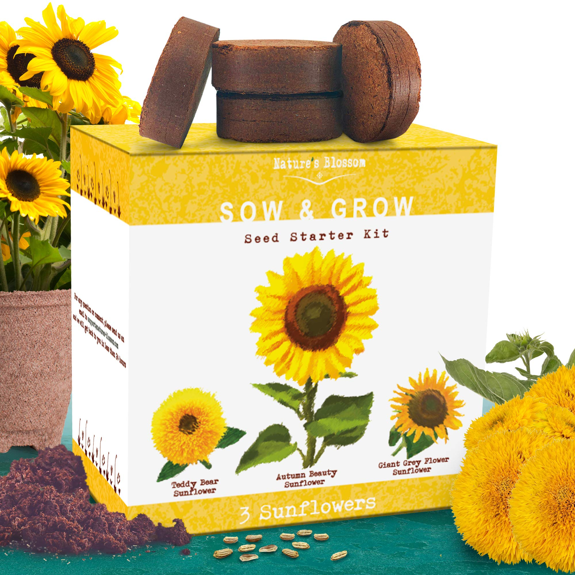 Nature's Blossom Sunflower Growing Kit - Grow 3 Different Sunflowers from Seed. A Complete Beginner Gardeners Growing Set to Start Your Own Indoor Flower Garden.