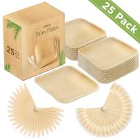 Palm Leaf Plates 10 Inch Pack of 25 Disposable Square Plates 25 Forks 25 Knives 100 % Biodegradable Compostable Thicker and Deeper Eco Friendly Plate for Wedding Thanksgiving Birthday and Dinner Party