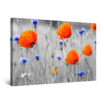 """Startonight Canvas Wall Art Abstract Red Poppies and Blue Flowers on The Field Painting, Framed 32"""" x 48"""""""