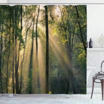 "Ambesonne Forest Shower Curtain, Morning Sunrays Through Trees Summertime Countryside Scenic View, Cloth Fabric Bathroom Decor Set with Hooks, 75"" Long, Green Beige"
