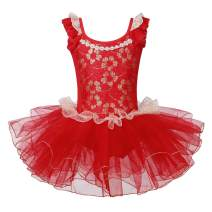 BAOHULU Girls Skirted Leotards Ballet Dance Tutu Princess Dress Ballerina Costumes 3-8Y
