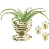 Crebri Air Plants Holders, Air Plant Wall Hanger, Display Stand, Tabletop Container - NO Plants Included (Gold) 4 Pack