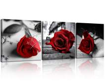 NAN Wind Canvas Print 3 Pcs Black and White Red Rose Canvas Art Painting Abstract Wall Art Decorations Flower Picture on Canvas for Home Decor Valentines Gift Stretched and Framed 12X12inches
