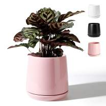 POTEY 051303 Plant Pot for Plants Flower- 5.7 Inch Shiny Pink Ceramic Glazed Planters Bonsai with Drainage Hole & Saucer(Plant NOT Included)