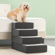 Zinus 2 Step Easy Pet Stairs/Pet Ramp/Pet Ladder
