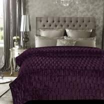 Chanasya Fuzzy Faux Fur Elegant Rectangular Embossed Throw Blanket - Plush Sherpa Microfiber Purple Blanket for Bed Couch Queen Blanket - Aubergine