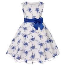 Girls Dress Party Dress for Girls Knee Length Cute Priness Dress Christmas Holiday Dress