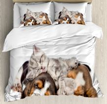 Ambesonne Funny Duvet Cover Set, Newborn Kitten Lying on The Puppies Basset Hound and Licks Sleeping Cuddle Picture, Decorative 3 Piece Bedding Set with 2 Pillow Shams, Queen Size, Beige Brown