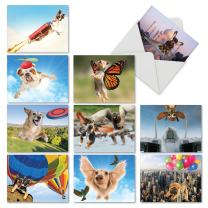 Funny Dog Thank You Cards with Envelopes (Box of 10), All-Occasion 'The Flying K9' Stationery for Parties, Gifts, Holidays 4 x 5.12 inch M6448TYG