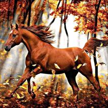 MXJSUA DIY 5D Diamond Painting by Number Kits Full Drill Rhinestone Embroidery Cross Stitch Pictures Arts Craft for Home Wall Decor Running Horse 12x12In