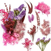 Real Natural Dried Flowers for Art Craft Mixed Multiple Colorful Dried Flowers for Soap Candle Scrapbooking DIY Resin (Claret Dried Flowers)