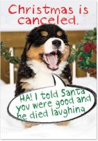 12 ' Christmas Is Canceled' Boxed Christmas Cards with Envelopes 4.63 x 6.75 inch, Adorable Puppy Christmas Notes, Cute Little Doggy Holiday Notes, Funny Christmas Stationery B1940