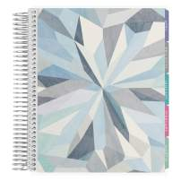 Erin Condren 12 - Month 2020 Academic Planner 7x9 (January - December 2020) - Kaleidoscope Neutral, Includes Monthly Calendar, Weekly Agenda, Laminated Tabs & Stickers