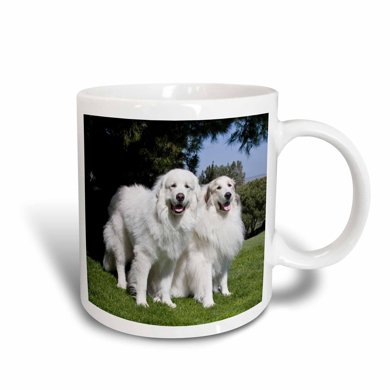 3dRose 142977_2 Two Pyrenees dogs in California Mug, 15 oz, Ceramic