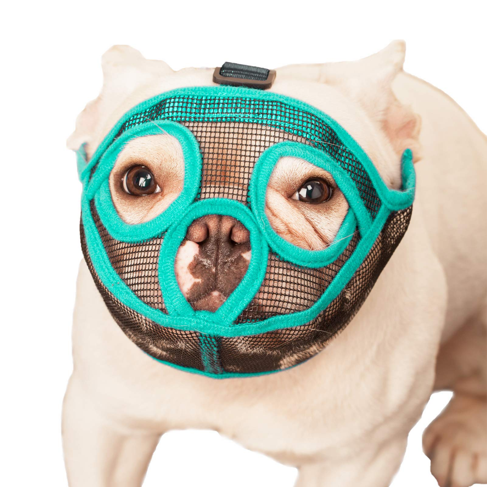 wintchuk Short Snout Dog Muzzle Mesh Mask Bulldog Muzzle Eye-Catching Lime Green Anti-Biting Chewing, Adjustable