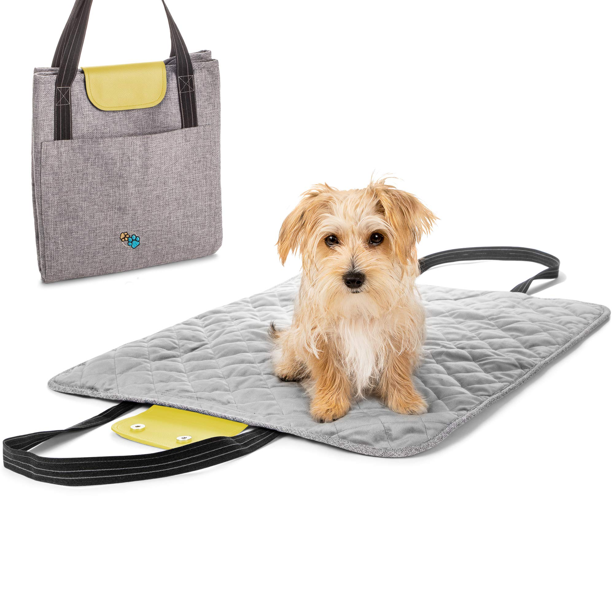 Riley And Mae Travel Dog Bed Plush Quilted Microvelvet Portable Indoor Outdoor Pet Mat Easy Carry Tote Bag Accessory Double Side Pockets Machine Washable