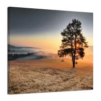 Mountain Tree Canvas Wall Art: Sunset Landscape Artwork Pictures Painting on Canvas for Bedroom (24'' x 18'')