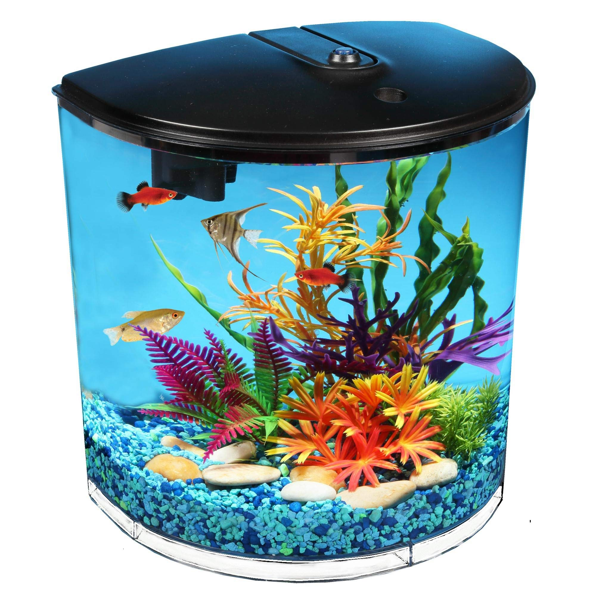 Koller Products 3.5-Gallon Aquarium with Power Filter, LED Lighting and 1-Year Supply of Filter Cartridges