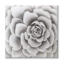 Paimuni Gray White Floral Succulent Plant Painting Modern Canvas Wall Art Printing with Embellishment Wall Decor Flower Pictures for Living Room Bathroom Bedroom Ready to Hang (24x24Inch)
