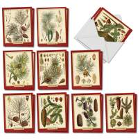 Pining for Christmas - 20 Boxed Season's Greetings Cards with Envelopes (4 x 5.12 Inch) - Pinecones, Trees, Assorted Merry Christmas and Holiday Notecard Set (2 Cards of 10 Designs) AM9627SGG-B2x10