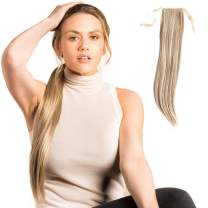 Madison Braids Womens Bree Long Drawstring Ponytail Extension Handmade Synthetic Hair Extensions Pony Tail - Bree - Ashy Highlighted