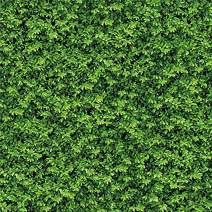 Allenjoy 8x8ft Soft Fabric Green Leaves Photography Backdrops Nature Birthday Party Background Photo Booth Props