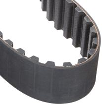 """Gates 800XXH300 PowerGrip Timing Belt, Double Extra Heavy, 1-1/4"""" Pitch, 3"""" Width, 64 Teeth, 80.00"""" Pitch Length"""