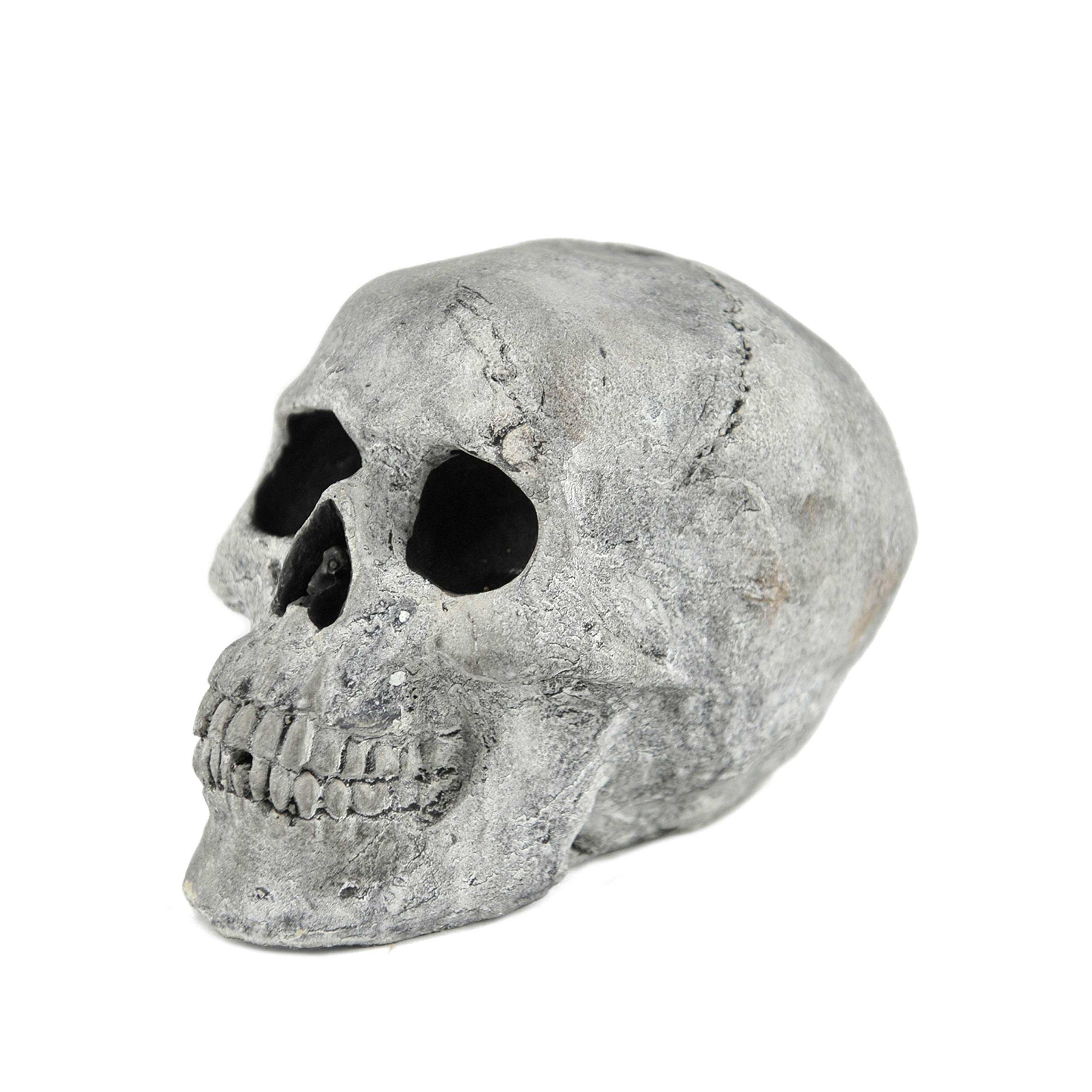 Myard Fireproof Imitated Human Fire Pit Skull Gas Log for NG, LP Wood Fireplace, Firepit, Campfire, Halloween Decor, BBQ (Qty 1, White - Mini, One Piece)