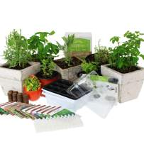 Culinary Indoor Herb Garden Starter Kit   Deluxe Herb Seeds   12 Non-GMO Varieties   Grow Cooking Herbs & Spices   Seeds: Cilantro, Arugula, Thyme, Sage, Chives, Dill, Basil, More