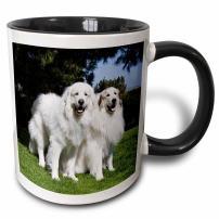 3dRose 142977_4 Two Pyrenees dogs in California Mug, 11 oz, Black