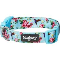 "Blueberry Pet 2021 New Spring Scent Inspired Flower and Hummingbird Adjustable Dog Collar, Sky Blue, Small, Neck 12""-16"""