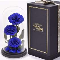 RUSTIC STEMS – Luxury Blue Preserved Rose Real Fresh Flower Forever Beauty and The Beast Eternal in Glass Dome Handmade Gifts for Mom Women Wife Girlfriend Enchanted Birthday Mother's Day Anniversary
