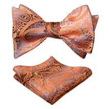 Alizeal Mens Gradient Paisley Self Bow Tie and Hanky Set