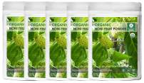 Naturevibe Botanicals USDA Organic Noni Fruit Powder, 5lbs (5 Packs of 16oz Each) - Morinda Citrifolia - 100% Pure & Natural - Gluten Free & Non-GMO   Supports Immunity System