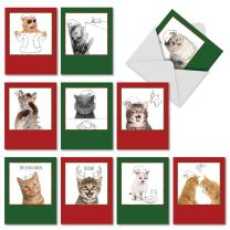 10 Assorted 'Christmas Cats and Doodles' Christmas Cards with Envelopes 4 x 5.12 inch, Blank Stationery Set in Festive Green and Red, Funny Photos of Cats with Whimsical Pencil Drawings M6583XSB