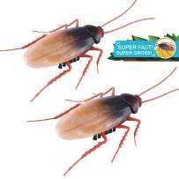 Robo Alive Scuttling Cockroach Battery-Powered Robotic Toy (2 Pack) (Custom Packaging) by ZURU