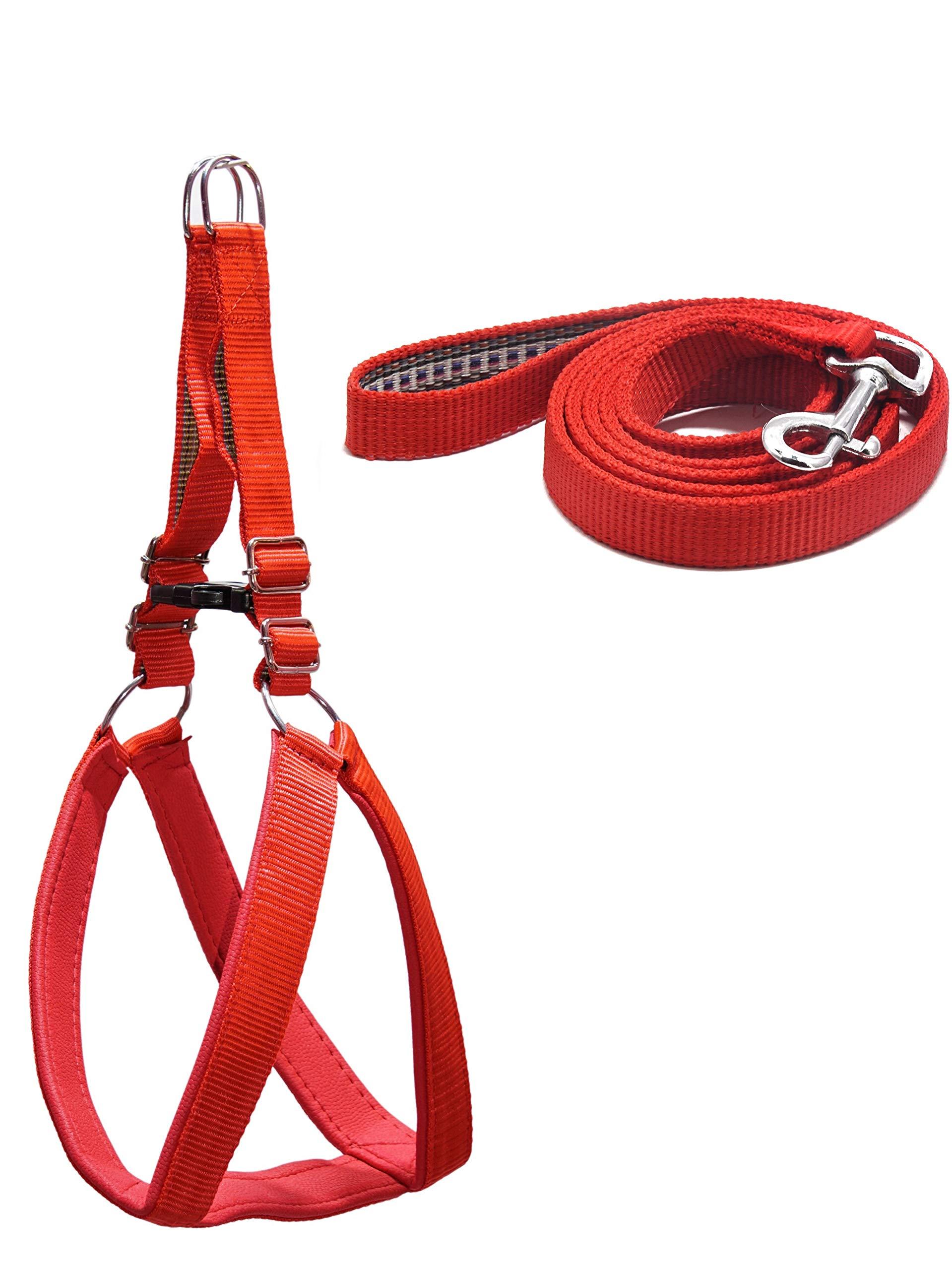 NimblFEET No Pull Nylon Adjustable Soft Padded Comfortable Pet Vest Harness and Leash Set Training Heavy Duty Vest for Dogs (Medium, Red)