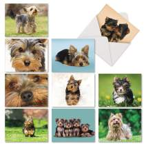 The Best Card Company - 10 Adorable Blank Dog Cards (4 x 5.12 Inch) - Pet Dog Breed Assortment, Boxed - Terrific Yorkshire Terriers AM6833OCB-B1x10