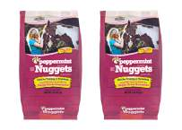 Manna Pro Horse Treat Peppermint, 1 Pound (Pack of 2)