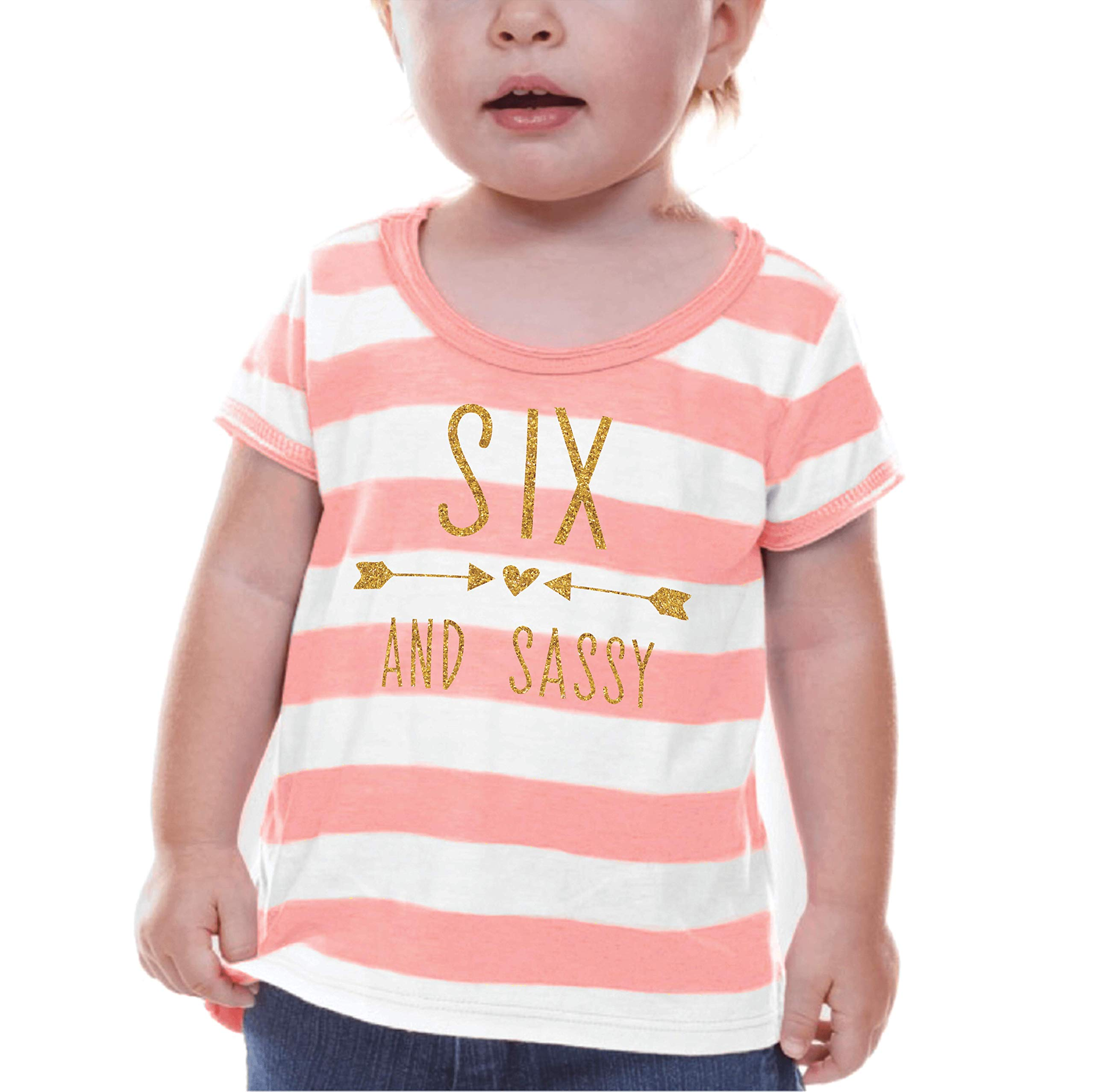 Bump and Beyond Designs Sixth Birthday Shirt Girl Sixth Birthday Outfit