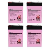 Charity Battery 6V 4.5AH General 00648 Sealed Non-Spillable Emergency Light Batteries Wka6-5F - 4 Pack