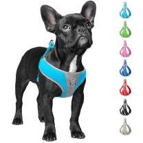 Fida Step-in Dog Harness, Superior Reflective Puppy Vest Harness - All Weather Air Mesh, Adjustable Harness for Small Dogs (S, River Blue)