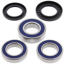 All Balls 25-1039 Rear Wheel Bearing Kit
