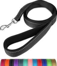 Taglory Nylon Dog Leash 6ft, Soft Padded Handle Pet Reflective Leashes for Puppy Small Medium Dogs Walking & Training, Black