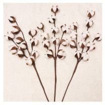 """Darget Cotton Stems - 29"""" Tall (3 Stems/Pack) Made from Real Natural White Cotton Flowers Bolls Farmhouse Style Rustic Floral for Home Decor Wedding Centerpiece"""