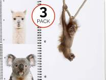 Llama, Monkey, Koala Spiral Notebooks - 3 pack - Spiral is 1 Subject, Wide Rule, 70 Sheets - Glossy Cover with Quality Paper - 6 Cute, Modern, Fun Animal Note Books Available