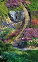 Springbok Garden Stairway Bridge Score Pads Bridge Playing Cards Accessory