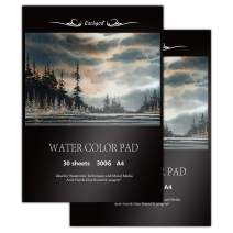 Eachgoo Watercolor Pad, Pack of 2, 30 Sheets Each A4 Acid Free Cold Pressed Paper 300gsm for Watercolor Painting,Drawing, Sketching (Pack of 2)