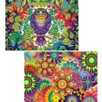 Ginfonr 5D DIY Diamond Painting by Number Kits Colorful Owl & Mandala Flower Full Drill, Kaleidoscope Paint with Diamonds Art Animal Rhinestone Cross Stitch Craft Decor (12x16 inch, 2 Pack)