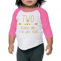 Bump and Beyond Designs Second Birthday Girl Shirt Two Year Old Girl Birthday Outfit